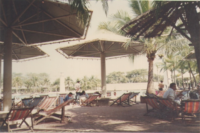 Beach Chairs and Shades
