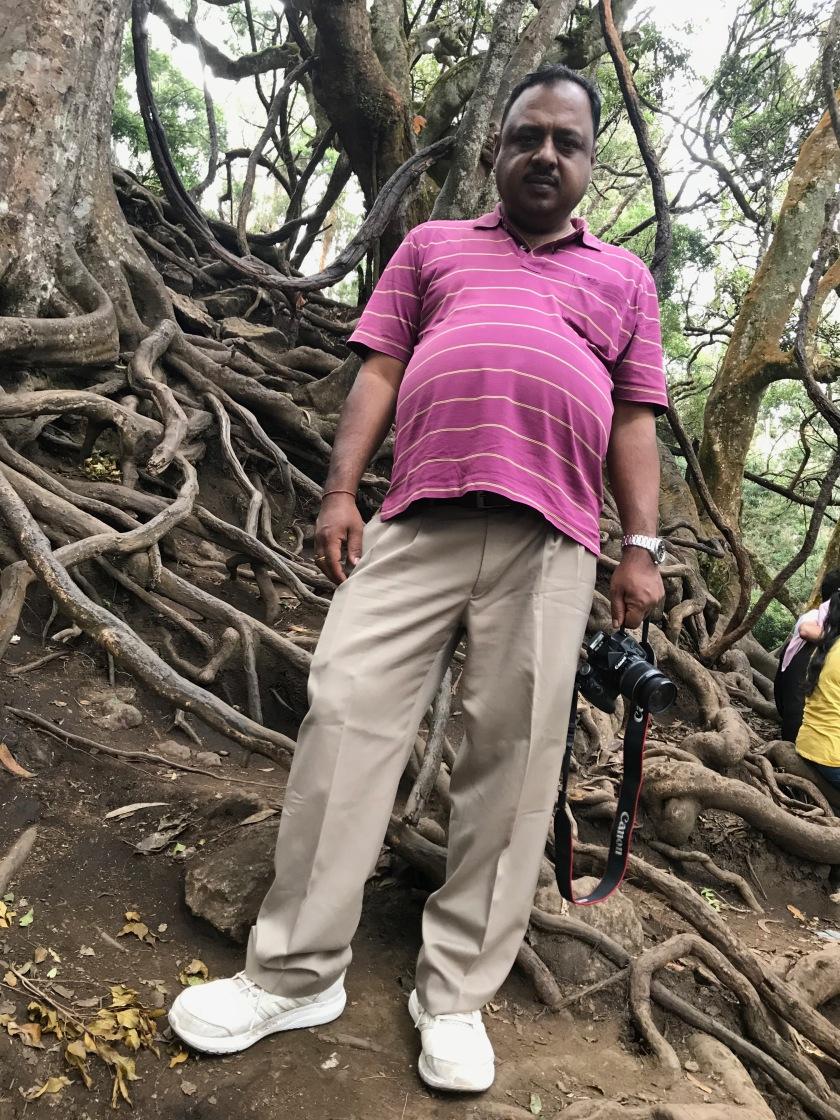 Banyan Tree Roots at Guna Caves